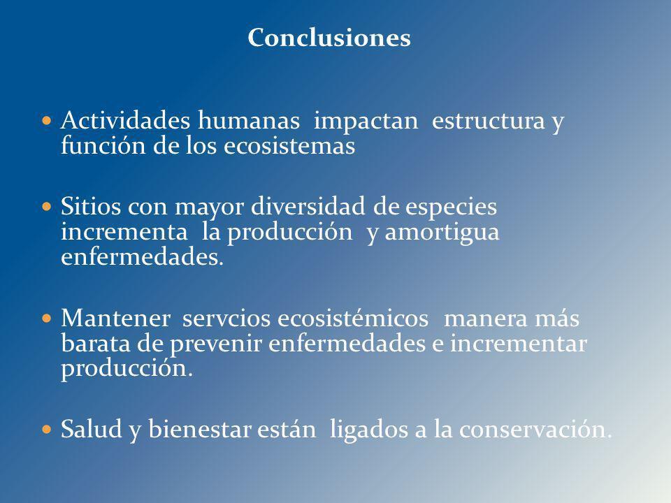 Actividades humanas impactan estructura y función de los ecosistemas Sitios con mayor diversidad de especies incrementa la producción y amortigua enfe