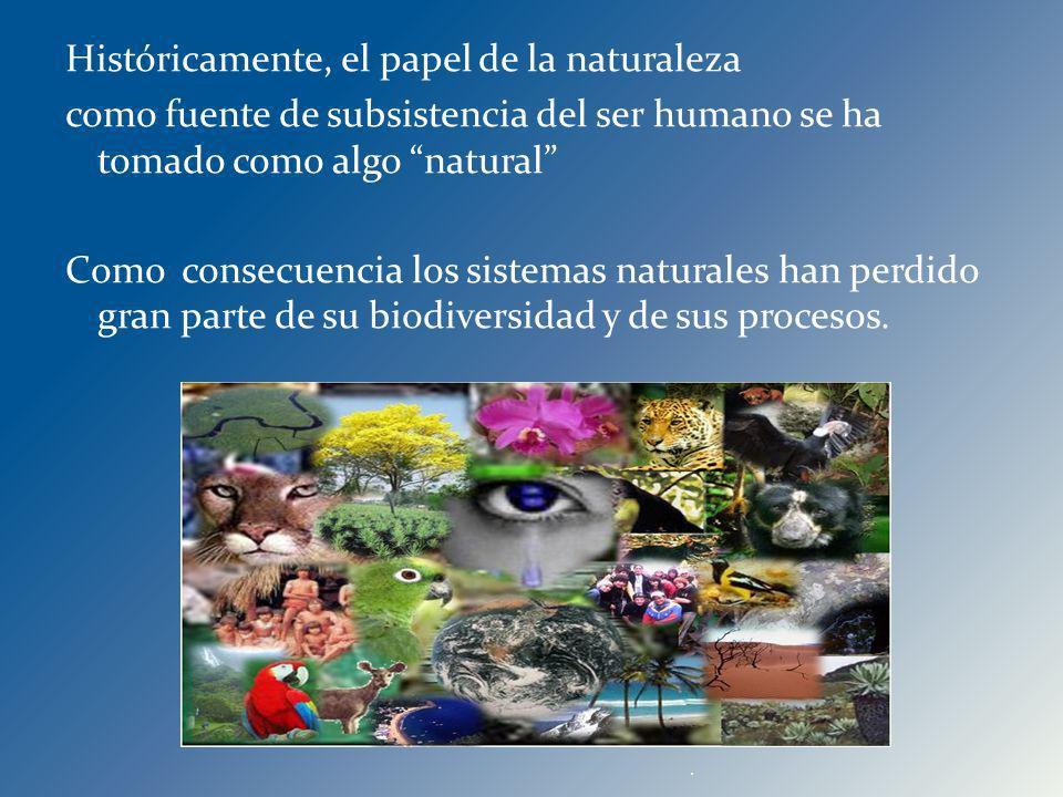 Históricamente, el papel de la naturaleza como fuente de subsistencia del ser humano se ha tomado como algo natural Como consecuencia los sistemas nat