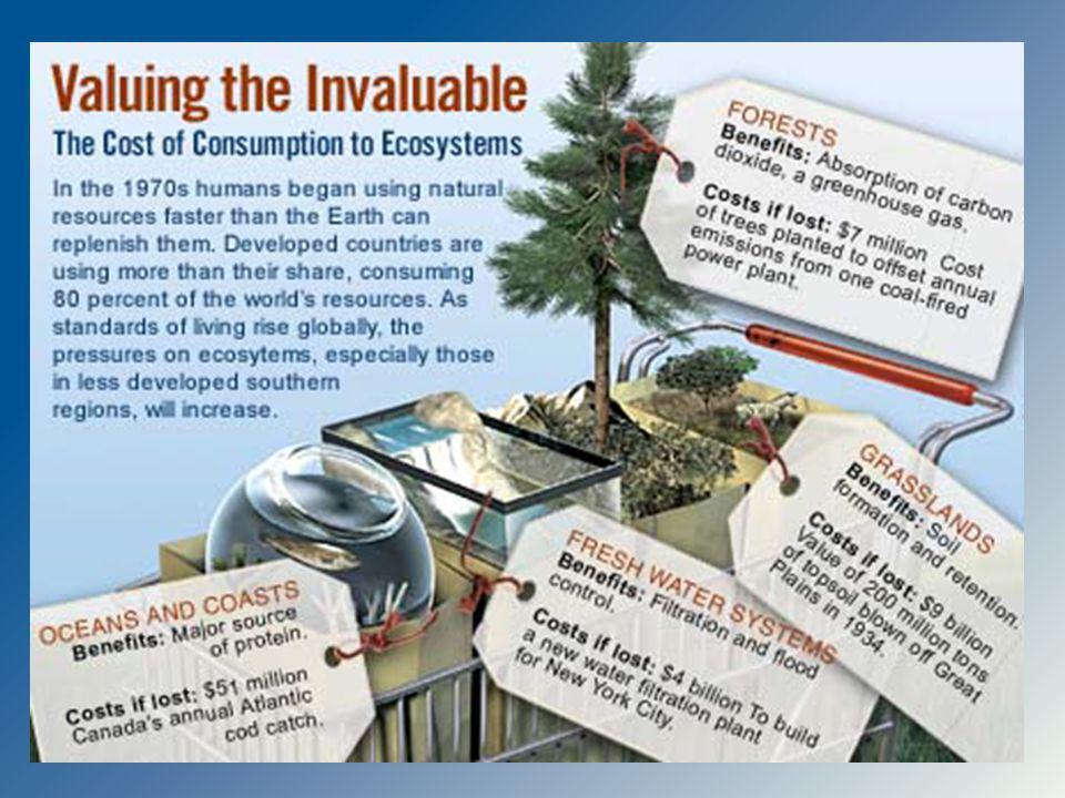 ROEDORES, MURCIELAGOS Y AVES: Indicadores ambientales Dispersión de semillas Parte importante de la dieta de otras especies Amortiguamiento de enfermedades Competencia con especies invasoras