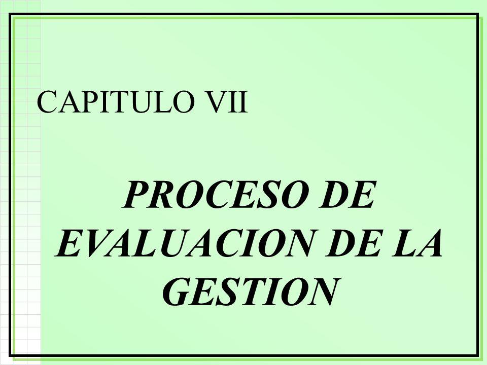 CAPITULO VII PROCESO DE EVALUACION DE LA GESTION