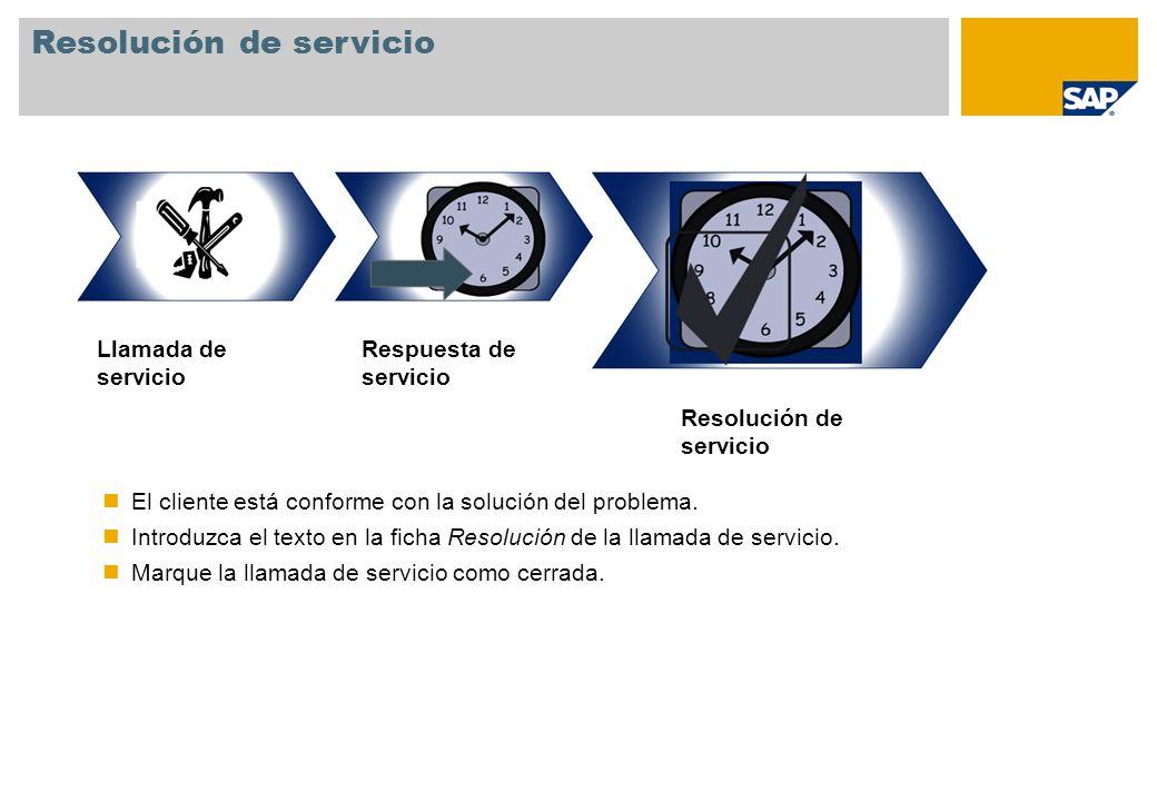 Respuesta de servicio Llamada de servicio Resolución de servicio El cliente está conforme con la solución del problema. Introduzca el texto en la fich