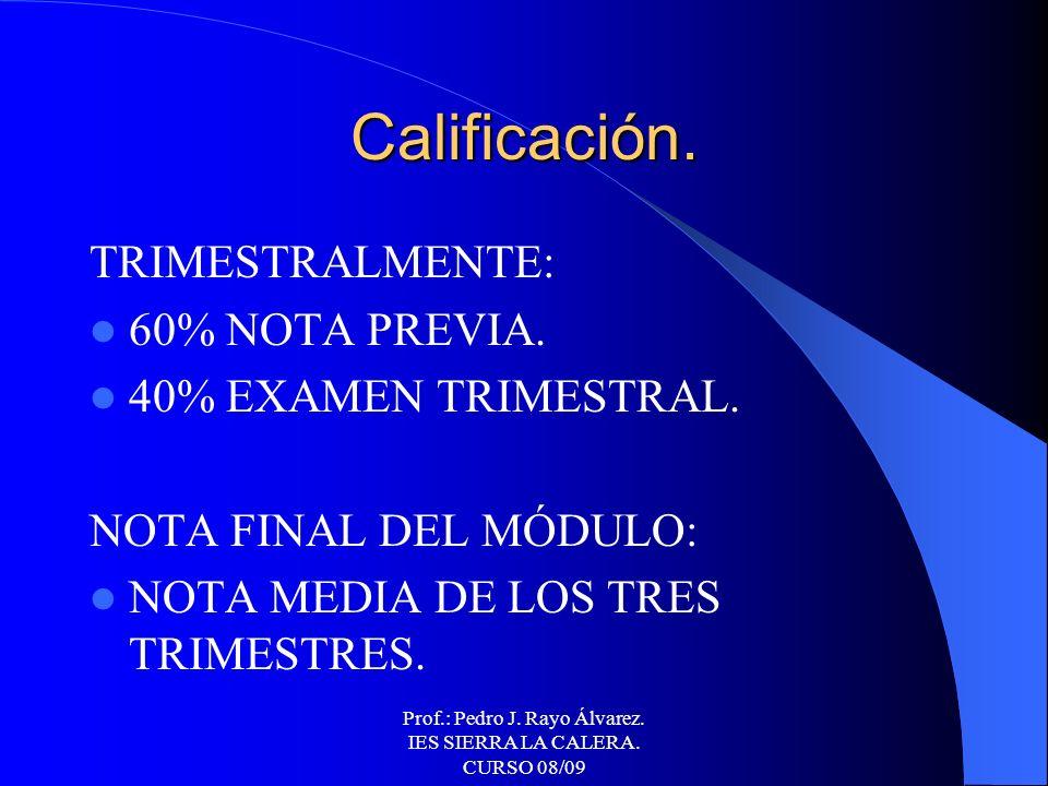 Prof.: Pedro J. Rayo Álvarez. IES SIERRA LA CALERA. CURSO 08/09 Evaluación. Síntesis inicial. Ejercicios prácticos (casa y clase). Trabajos. Varios co