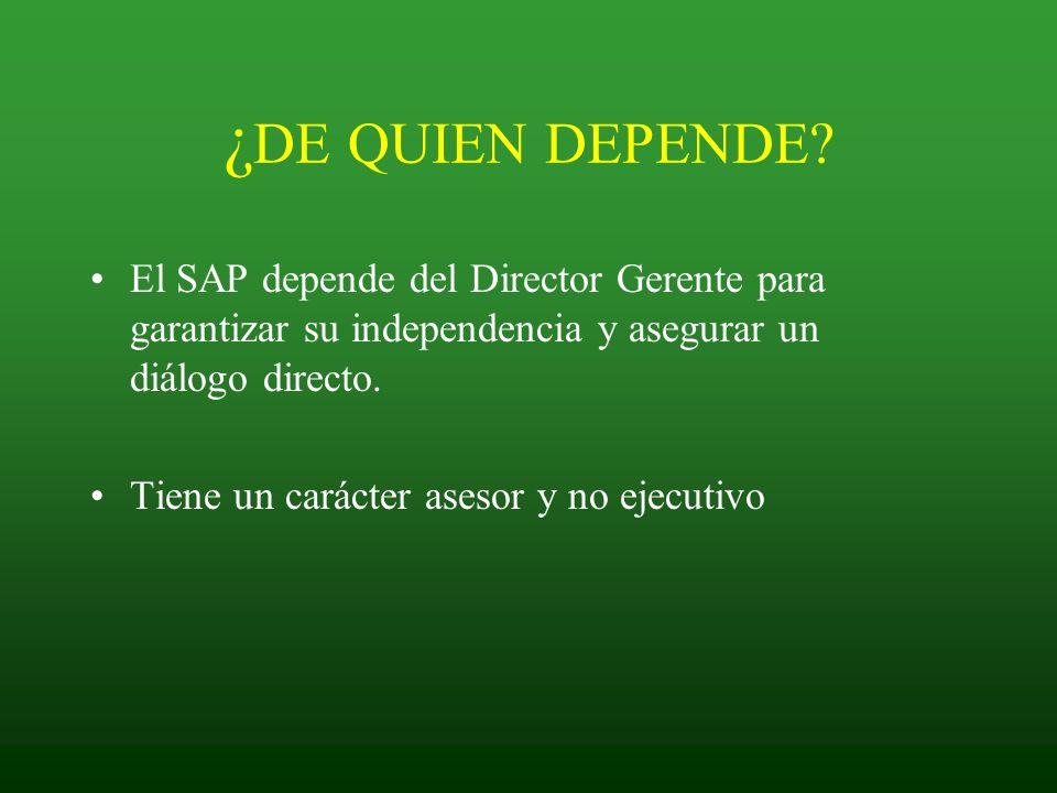 ¿ DE QUIEN DEPENDE? El SAP depende del Director Gerente para garantizar su independencia y asegurar un diálogo directo. Tiene un carácter asesor y no