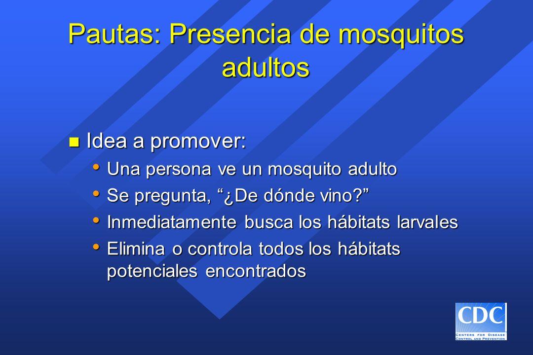 Pautas: Presencia de mosquitos adultos n Idea a promover: Una persona ve un mosquito adulto Una persona ve un mosquito adulto Se pregunta, ¿De dónde v