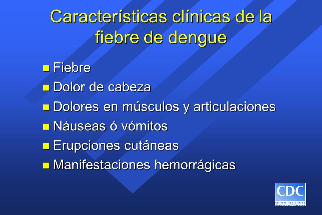 Características clínicas de la fiebre de dengue n Fiebre n Dolor de cabeza n Dolores en músculos y articulaciones n Náuseas ó vómitos n Erupciones cut