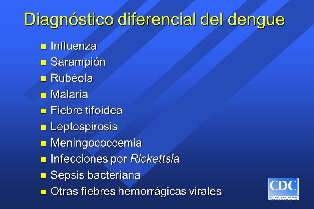 Diagnóstico diferencial del dengue n Influenza n Sarampión n Rubéola n Malaria n Fiebre tifoidea n Leptospirosis n Meningococcemia n Infecciones por R