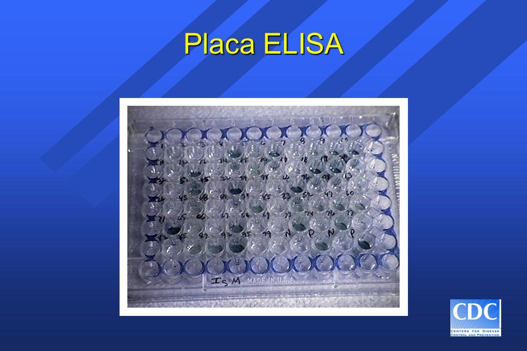 Placa ELISA