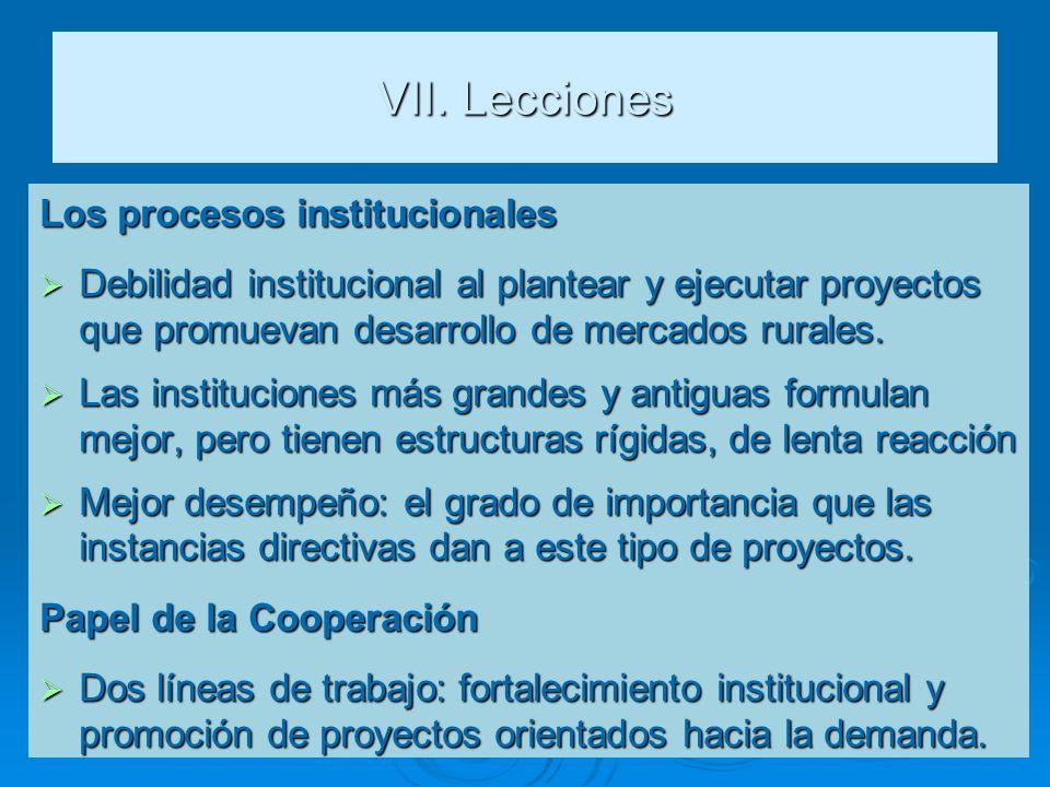 VII. Lecciones Los procesos institucionales Debilidad institucional al plantear y ejecutar proyectos que promuevan desarrollo de mercados rurales. Deb