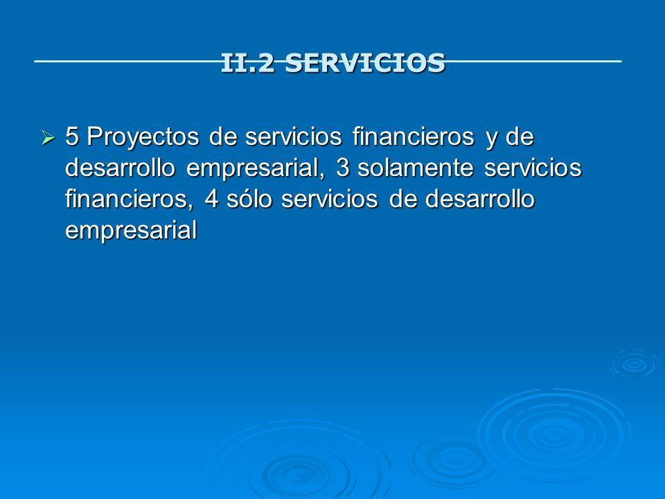 II.2 SERVICIOS 5 Proyectos de servicios financieros y de desarrollo empresarial, 3 solamente servicios financieros, 4 sólo servicios de desarrollo emp