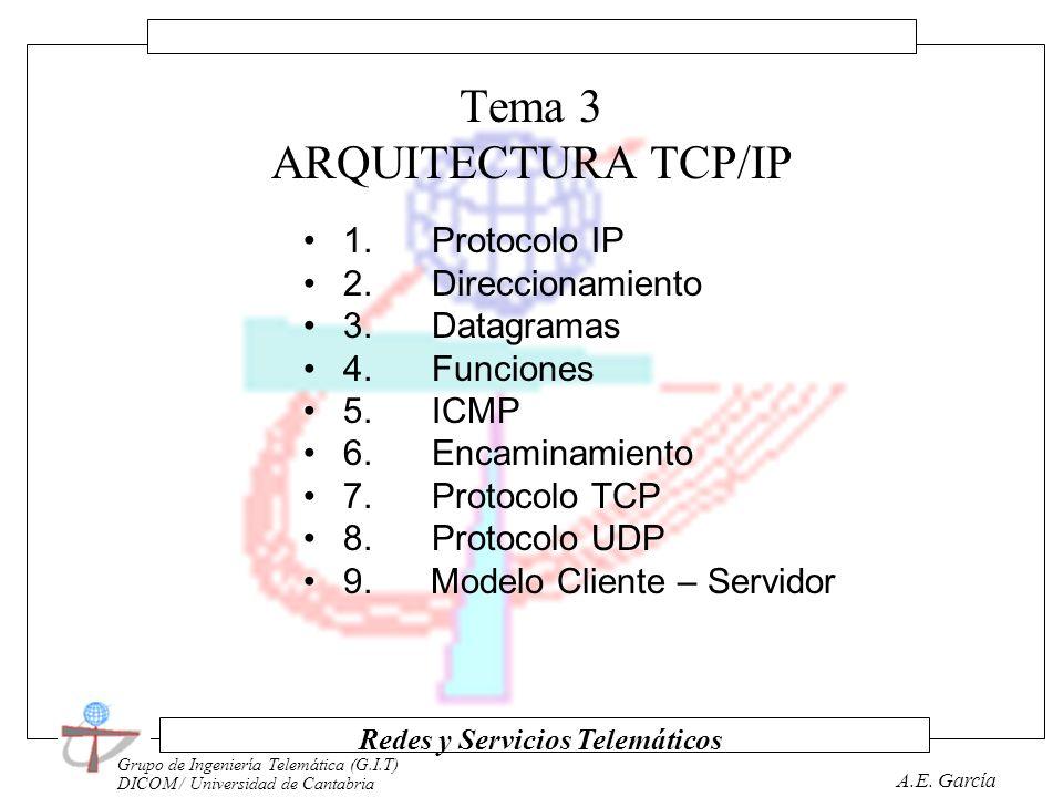 Grupo de Ingeniería Telemática (G.I.T) DICOM / Universidad de Cantabria Redes y Servicios Telemáticos A.E. García Tema 2 TÉCNICAS DE TRANSMISIÓN Y CON