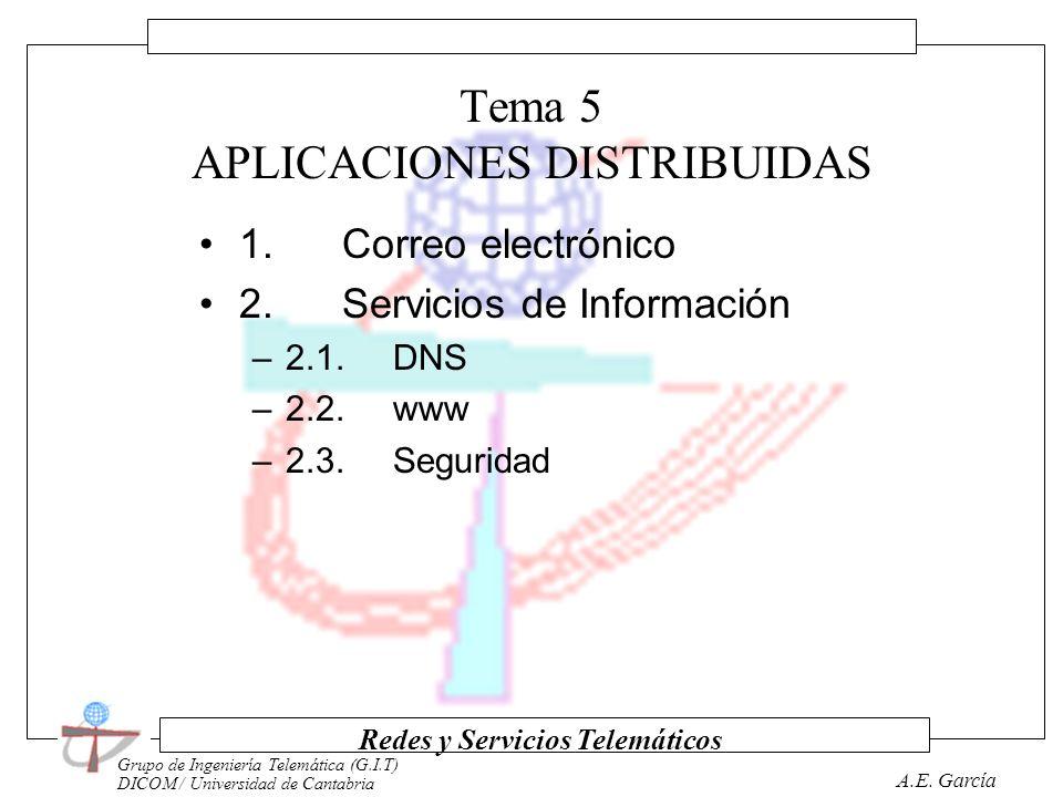 Grupo de Ingeniería Telemática (G.I.T) DICOM / Universidad de Cantabria Redes y Servicios Telemáticos A.E. García Tema 4 LOS NIVELES DE APLICACIÓN 1.
