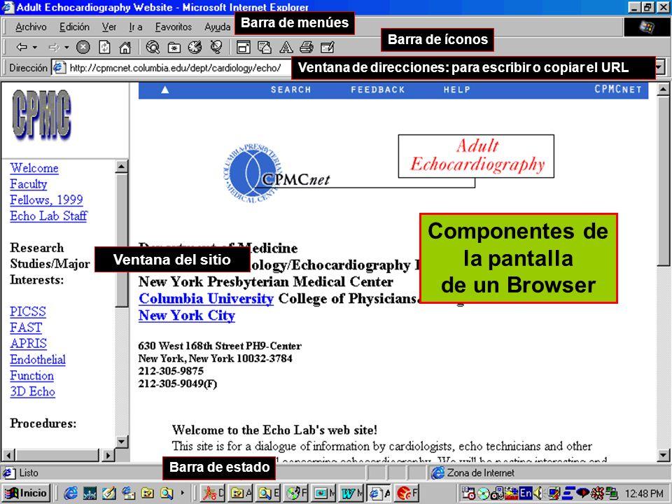 Componentes de la pantalla de un Browser Barra de menúes Barra de íconos Ventana de direcciones: para escribir o copiar el URL Ventana del sitio Barra