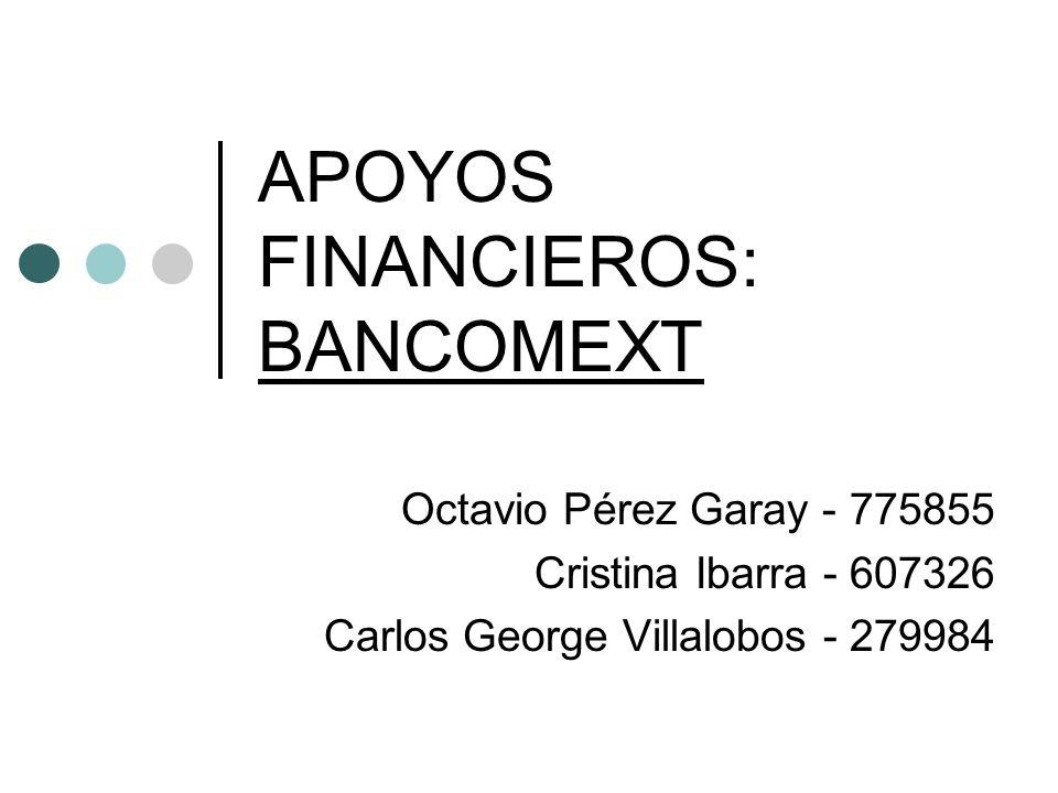 APOYOS FINANCIEROS: BANCOMEXT Octavio Pérez Garay - 775855 Cristina Ibarra - 607326 Carlos George Villalobos - 279984
