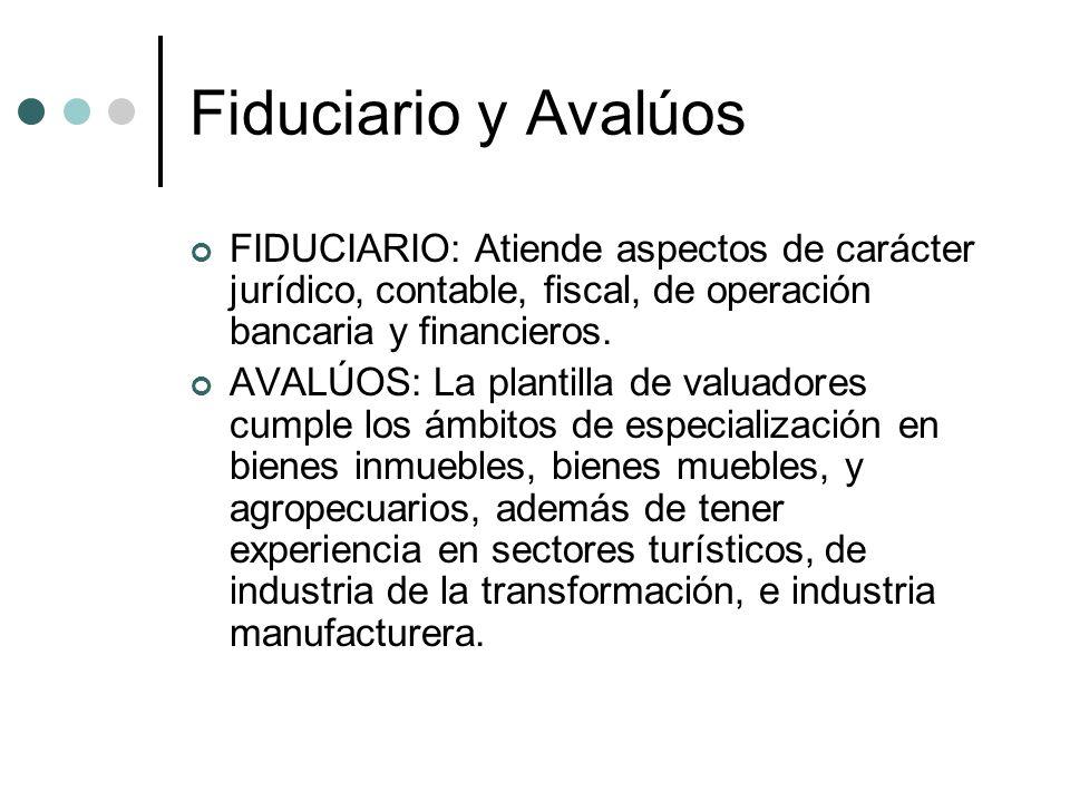 Fiduciario y Avalúos FIDUCIARIO: Atiende aspectos de carácter jurídico, contable, fiscal, de operación bancaria y financieros. AVALÚOS: La plantilla d
