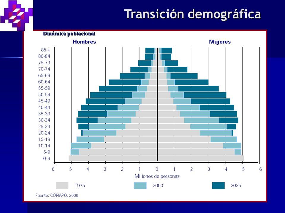 Transición demográfica Dinámica poblacional
