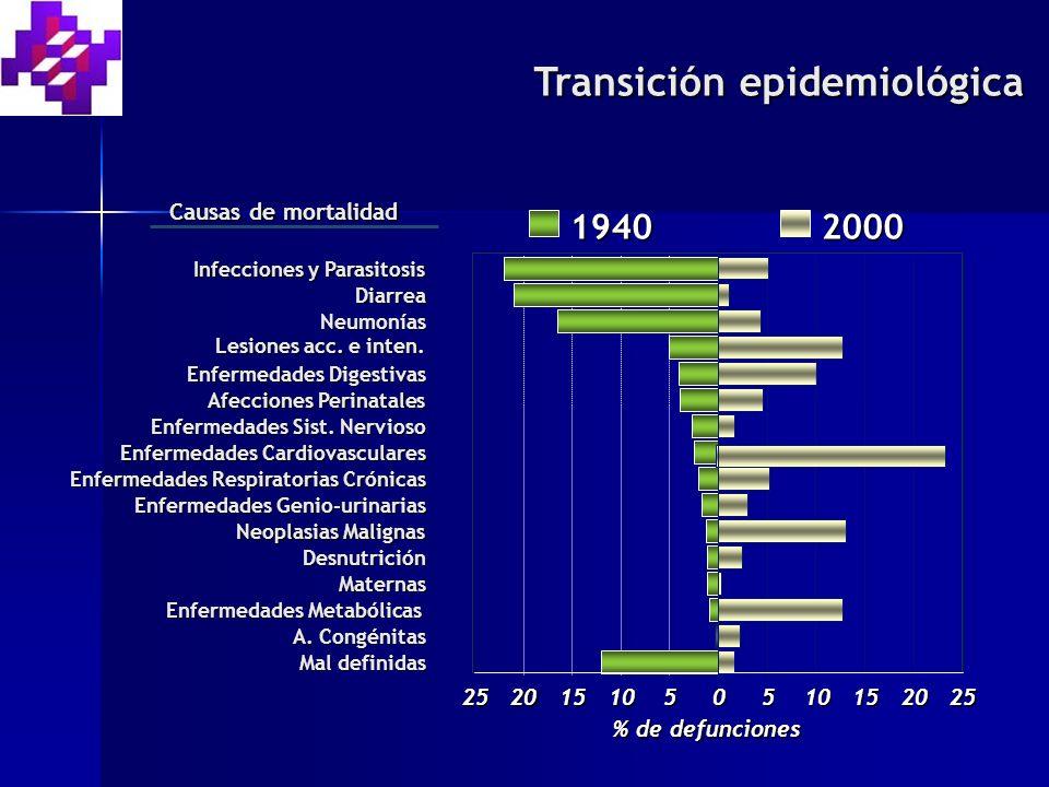 Diarrea Enfermedades Respiratorias Crónicas Infecciones y Parasitosis Neumonías Lesiones acc.