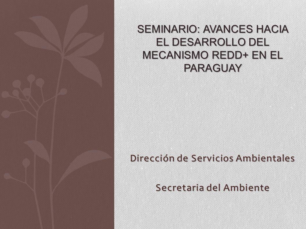 Dirección de Servicios Ambientales Secretaria del Ambiente SEMINARIO: AVANCES HACIA EL DESARROLLO DEL MECANISMO REDD+ EN EL PARAGUAY