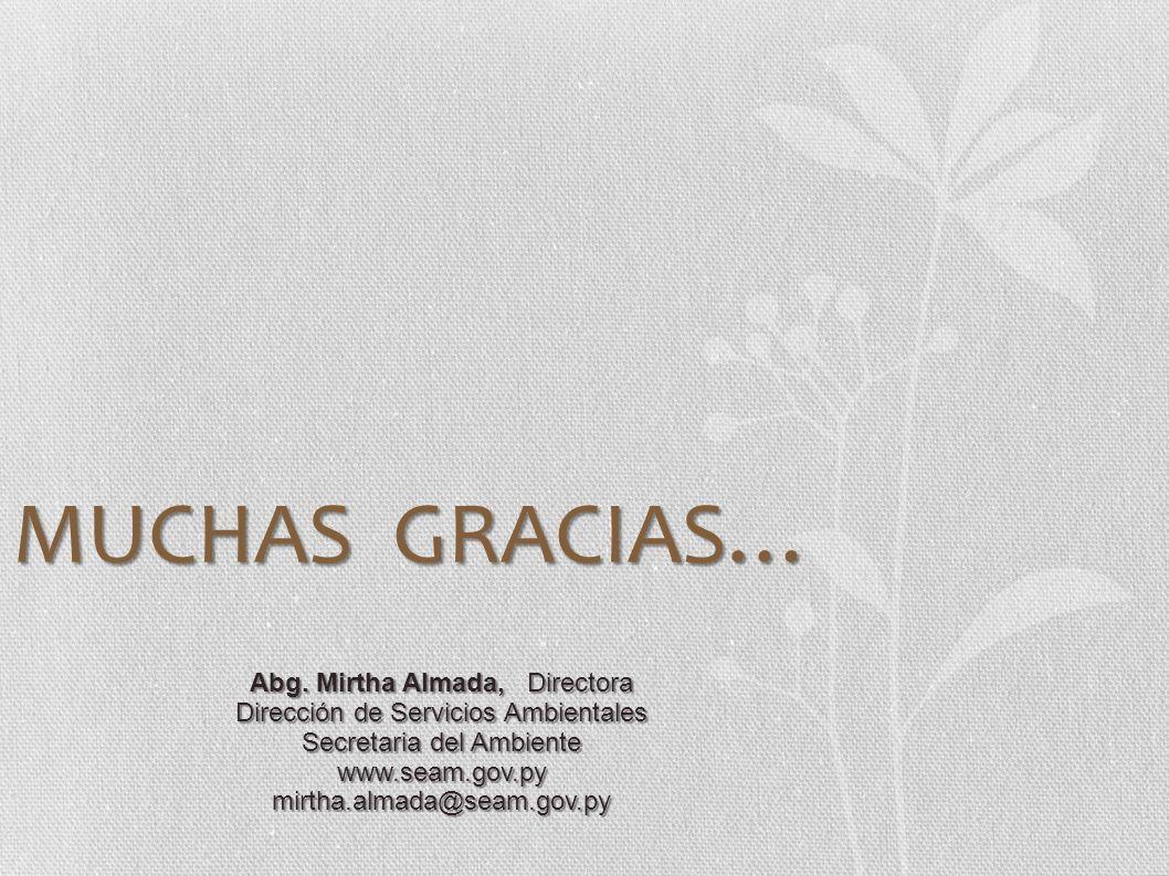 MUCHAS GRACIAS… Abg. Mirtha Almada, Directora Dirección de Servicios Ambientales Secretaria del Ambiente www.seam.gov.pymirtha.almada@seam.gov.py