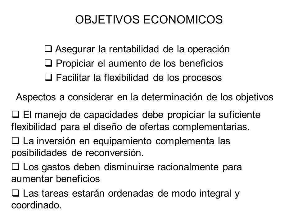 OBJETIVOS ECONOMICOS Asegurar la rentabilidad de la operación Propiciar el aumento de los beneficios Facilitar la flexibilidad de los procesos El mane
