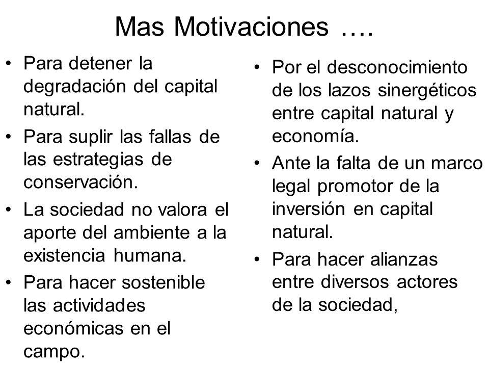 Mas Motivaciones ….Para detener la degradación del capital natural.