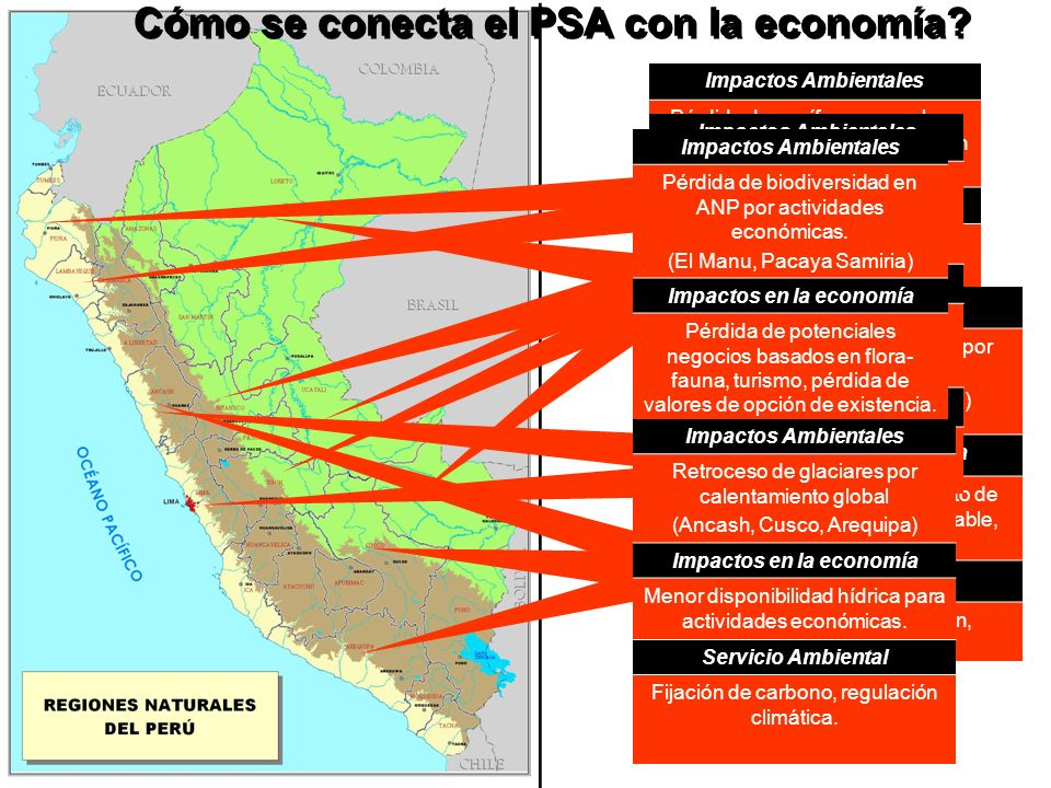Cómo se conecta el PSA con la economía.