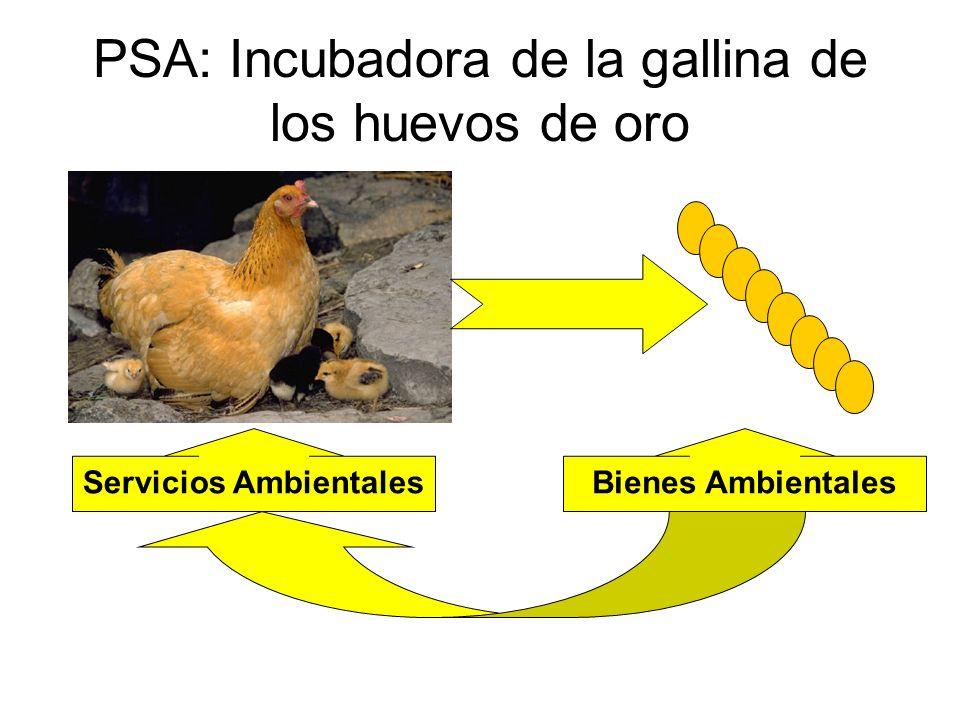 PSA: Incubadora de la gallina de los huevos de oro Servicios AmbientalesBienes Ambientales