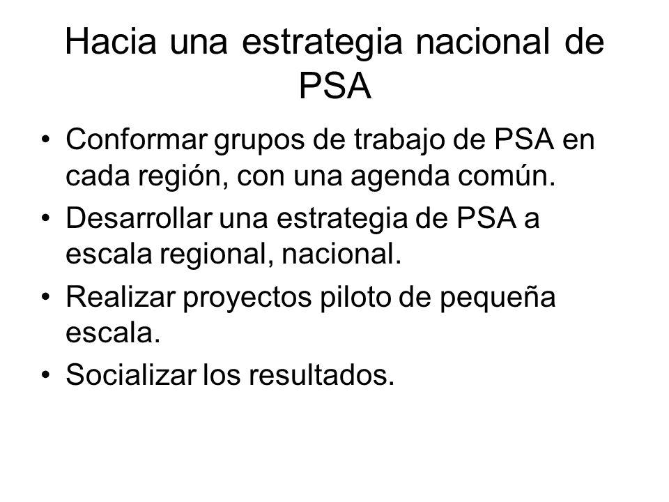 Hacia una estrategia nacional de PSA Conformar grupos de trabajo de PSA en cada región, con una agenda común.