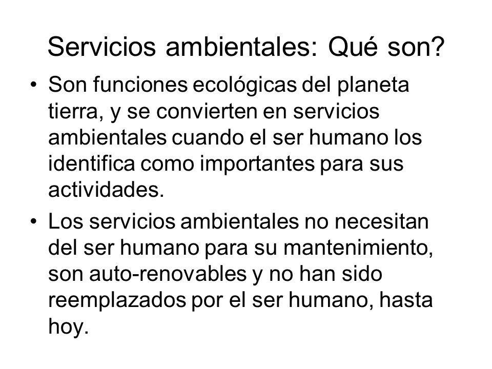 Concepto de servicio ambiental Un bien ambiental se identifica a partir de su aprovechamiento (e.g., madera, animales, agua), en cambio los servicios ambientales (e.g., generación de agua, aire, suelos) se definen a partir de las funciones de los ecosistemas, los que sustentan la creación continua de bienes ambientales.