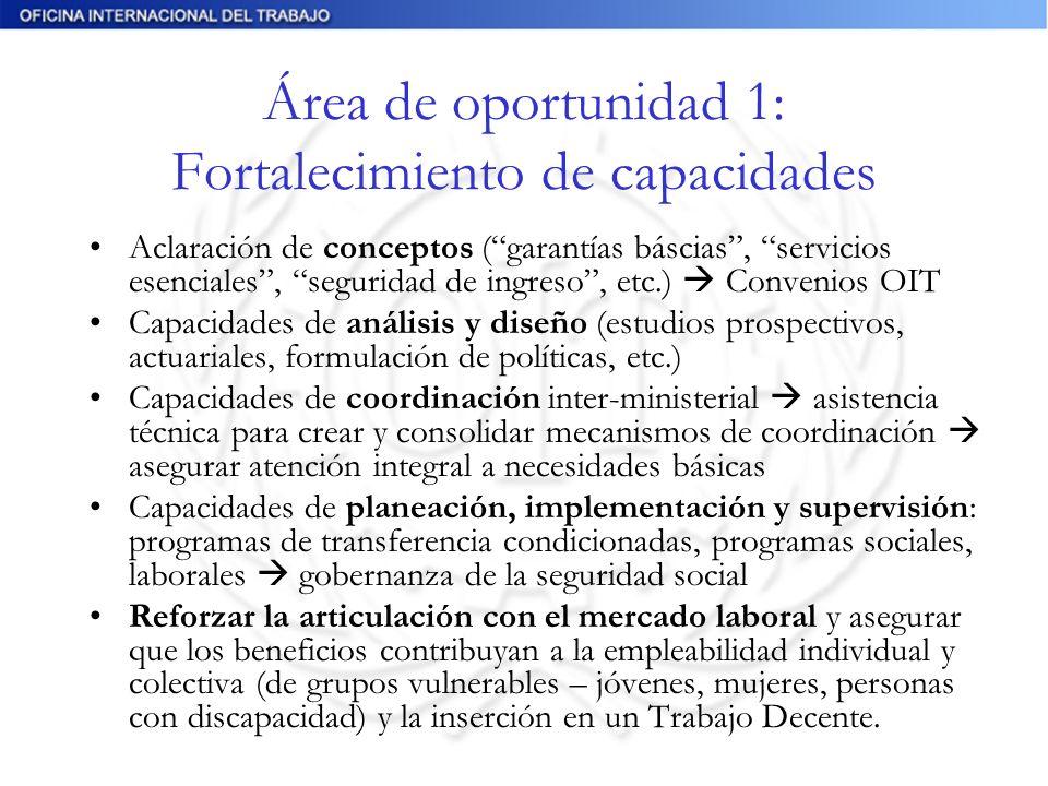 Área de oportunidad 1: Fortalecimiento de capacidades Aclaración de conceptos (garantías báscias, servicios esenciales, seguridad de ingreso, etc.) Co