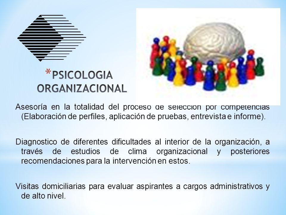 Asesoría en la totalidad del proceso de selección por competencias (Elaboración de perfiles, aplicación de pruebas, entrevista e informe). Diagnostico
