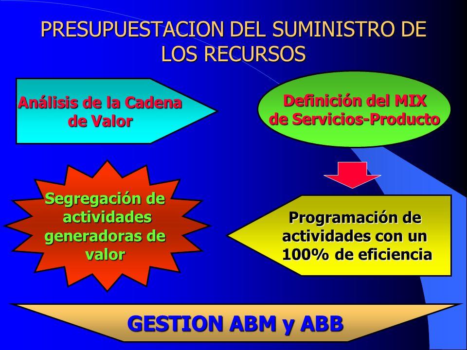 PRESUPUESTACION DEL SUMINISTRO DE LOS RECURSOS Análisis de la Cadena Análisis de la Cadena de Valor Definición del MIX de Servicios-Producto Programac