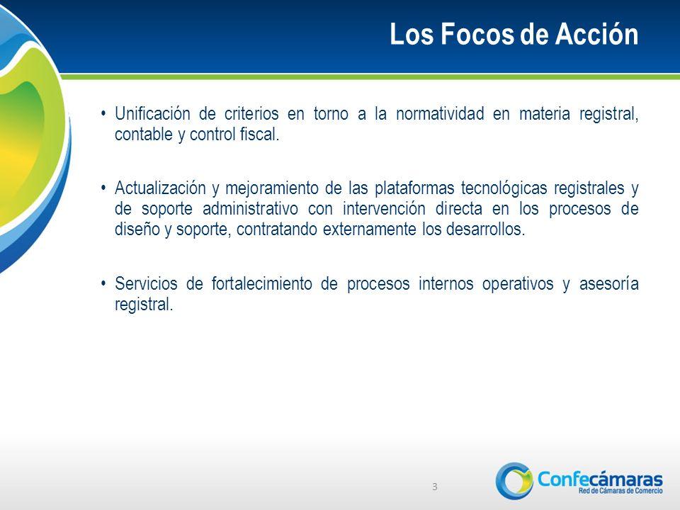 Los Focos de Acción Unificación de criterios en torno a la normatividad en materia registral, contable y control fiscal.