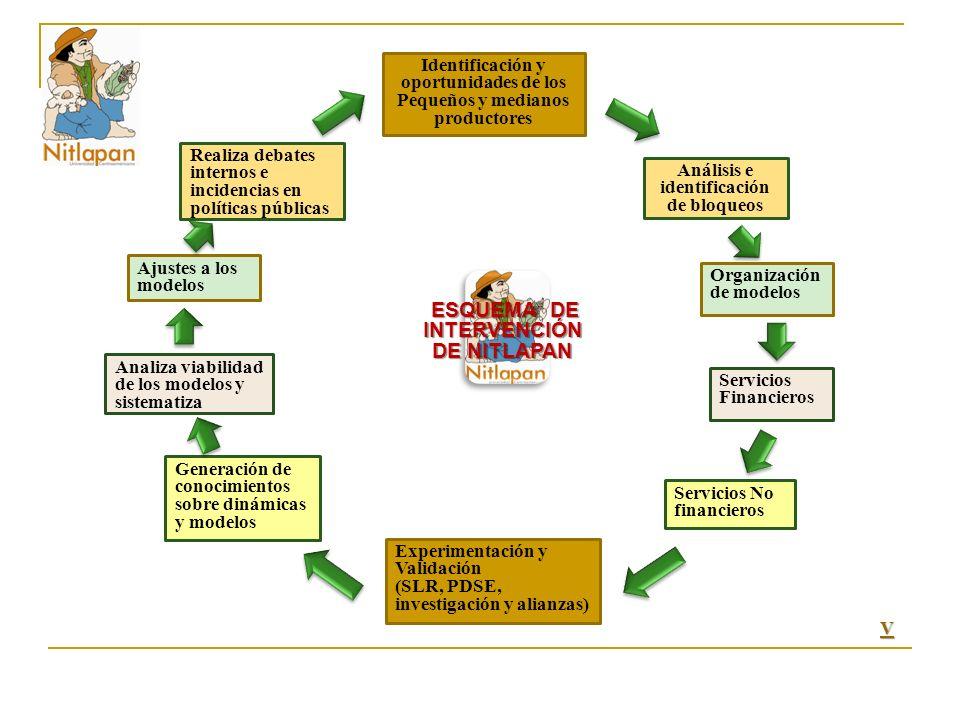 Identificación y oportunidades de los Pequeños y medianos productores Análisis e identificación de bloqueos Servicios Financieros Servicios No financieros Experimentación y Validación (SLR, PDSE, investigación y alianzas) Generación de conocimientos sobre dinámicas y modelos Analiza viabilidad de los modelos y sistematiza Realiza debates internos e incidencias en políticas públicas Ajustes a los modelos Organización de modelos ESQUEMA DE INTERVENCIÓN DE NITLAPAN ESQUEMA DE INTERVENCIÓN DE NITLAPAN VVVV