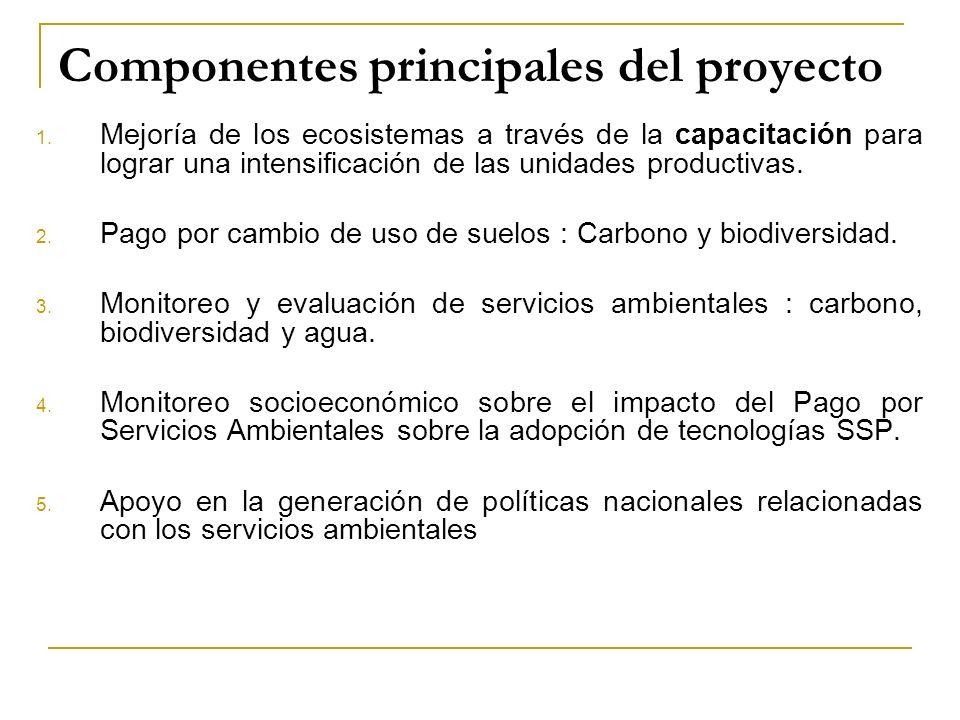 Componentes principales del proyecto 1.