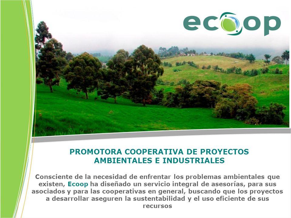PROMOTORA COOPERATIVA DE PROYECTOS AMBIENTALES E INDUSTRIALES Consciente de la necesidad de enfrentar los problemas ambientales que existen, Ecoop ha