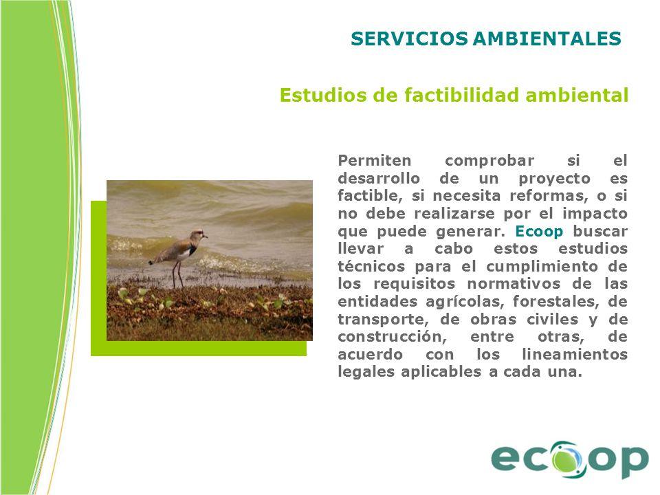 SERVICIOS AMBIENTALES Estudios de factibilidad ambiental Permiten comprobar si el desarrollo de un proyecto es factible, si necesita reformas, o si no