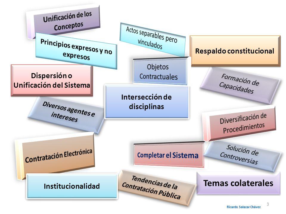Intersección de disciplinas Dispersión o Unificación del Sistema Respaldo constitucional Temas colaterales Institucionalidad Ricardo Salazar Chávez 3