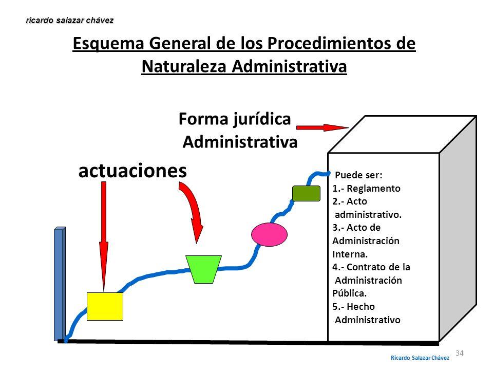 Esquema General de los Procedimientos de Naturaleza Administrativa Puede ser: 1.- Reglamento 2.- Acto administrativo. 3.- Acto de Administración Inter