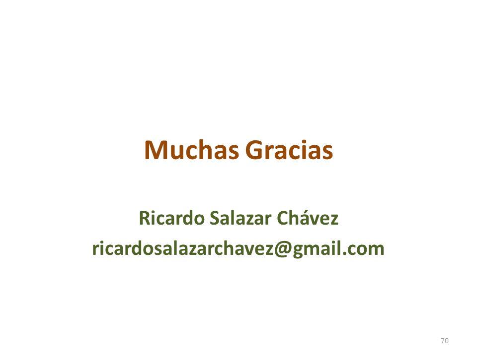 Muchas Gracias Ricardo Salazar Chávez ricardosalazarchavez@gmail.com 70
