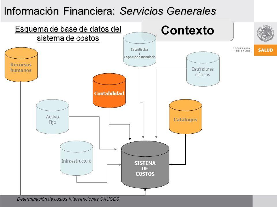 Contexto Esquema de base de datos del sistema de costos Información Financiera: Servicios Generales Determinación de costos intervenciones CAUSES Recu