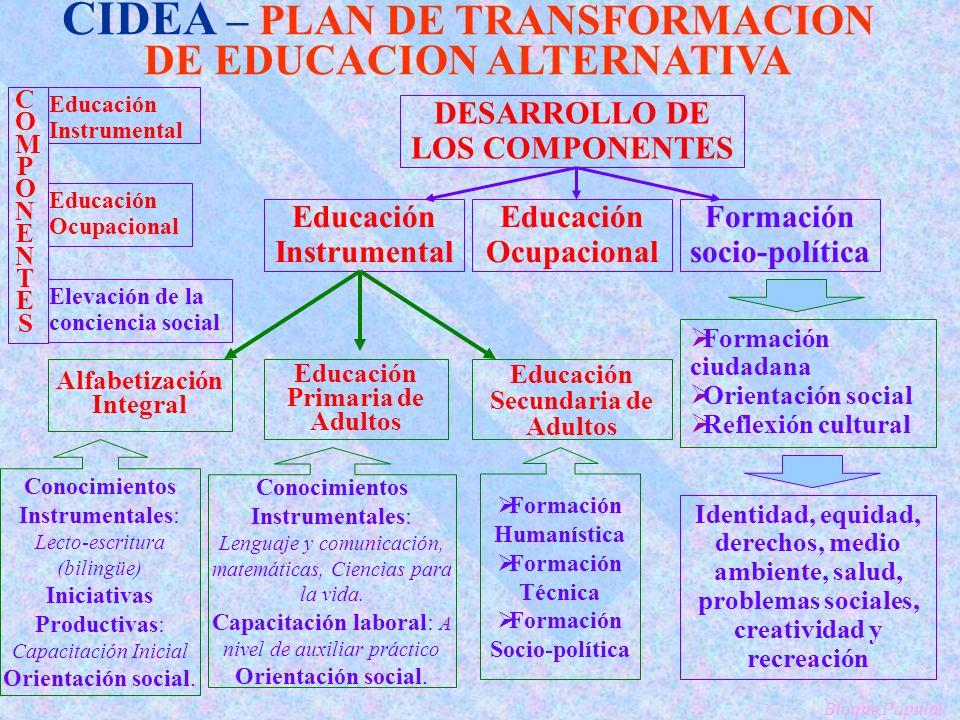 CIDEA – PLAN DE TRANSFORMACION DE EDUCACION ALTERNATIVA COMPONENTESCOMPONENTES Educación Instrumental Educación Ocupacional Elevación de la conciencia social.