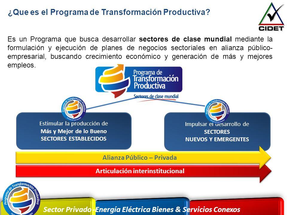 Sector Privado -Energía Eléctrica Bienes & Servicios Conexos ¿Que es el Programa de Transformación Productiva? Es un Programa que busca desarrollar se