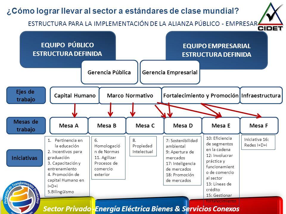 Sector Privado -Energía Eléctrica Bienes & Servicios Conexos EQUIPO PÚBLICO ESTRUCTURA DEFINIDA EQUIPO EMPRESARIAL ESTRUCTURA DEFINIDA Capital Humano