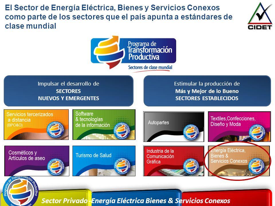 Sector Privado -Energía Eléctrica Bienes & Servicios Conexos El Sector de Energía Eléctrica, Bienes y Servicios Conexos como parte de los sectores que