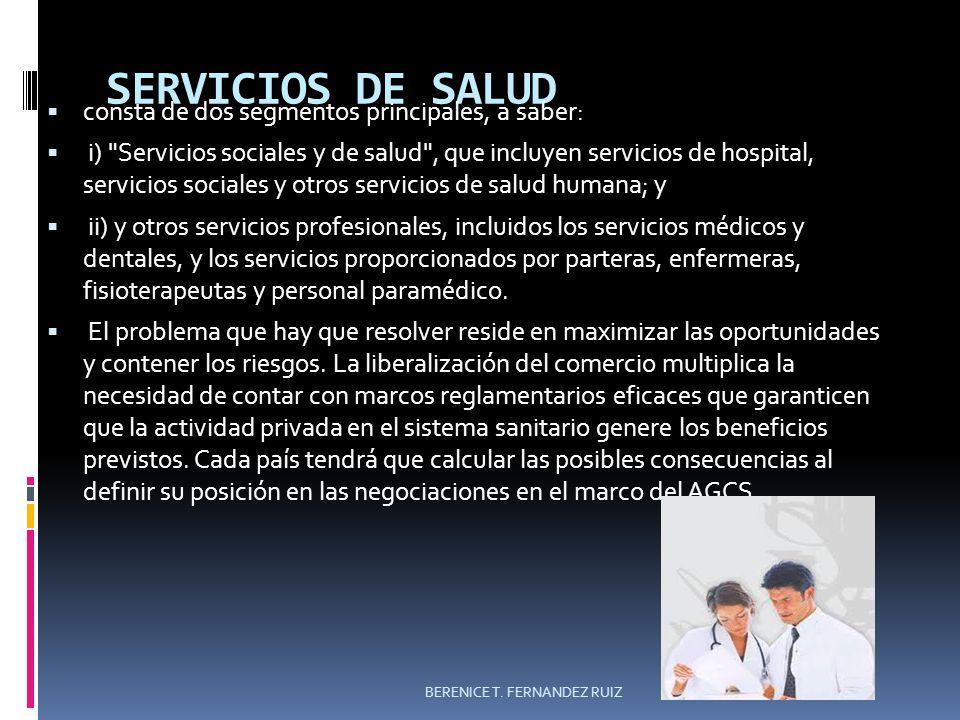 SERVICIOS DE SALUD consta de dos segmentos principales, a saber: i)