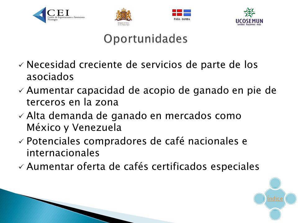 Necesidad creciente de servicios de parte de los asociados Aumentar capacidad de acopio de ganado en pie de terceros en la zona Alta demanda de ganado en mercados como México y Venezuela Potenciales compradores de café nacionales e internacionales Aumentar oferta de cafés certificados especiales Índice