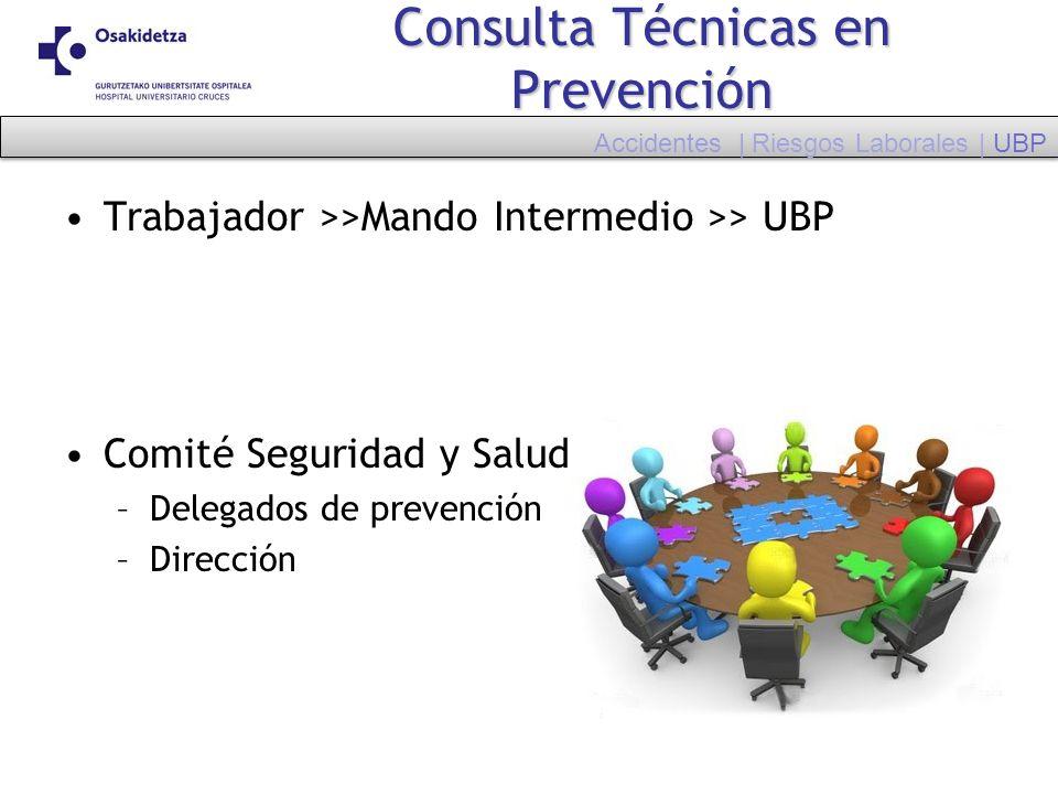 Consulta Técnicas en Prevención Trabajador >>Mando Intermedio >> UBP Comité Seguridad y Salud –Delegados de prevención –Dirección Accidentes | Riesgos