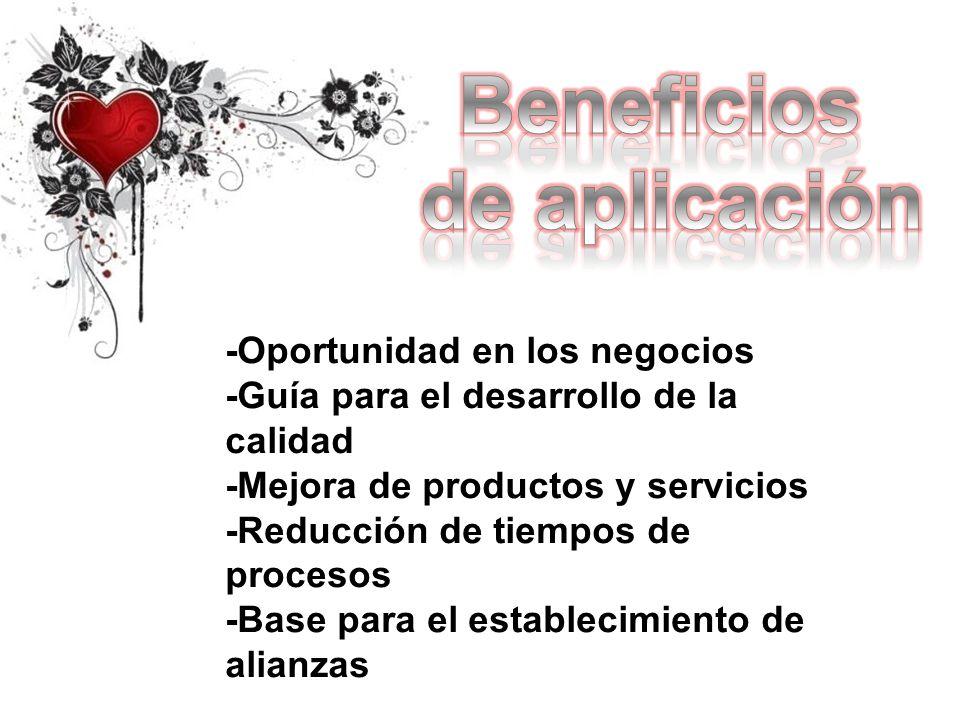 -Oportunidad en los negocios -Guía para el desarrollo de la calidad -Mejora de productos y servicios -Reducción de tiempos de procesos -Base para el e