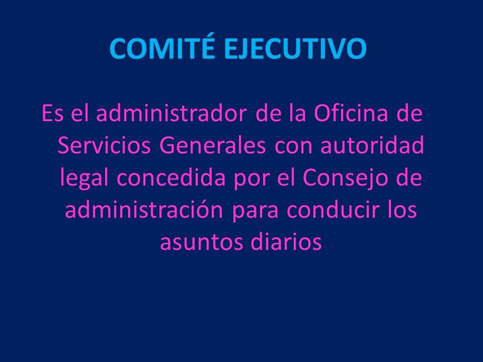 Es el administrador de la Oficina de Servicios Generales con autoridad legal concedida por el Consejo de administración para conducir los asuntos diar