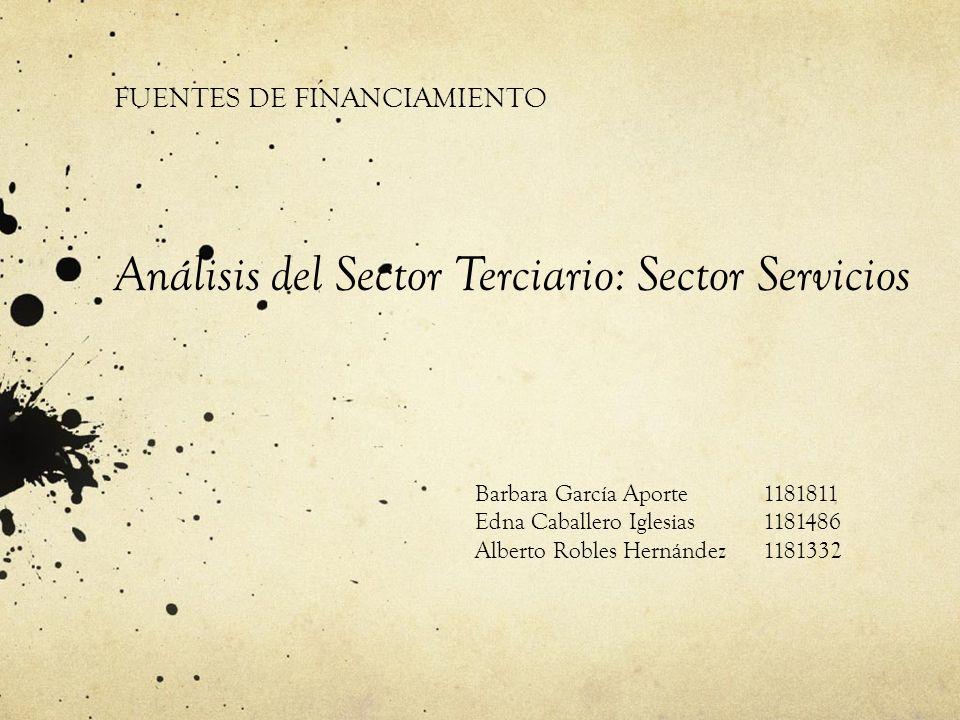 FUENTES DE FINANCIAMIENTO Análisis del Sector Terciario: Sector Servicios Barbara García Aporte1181811 Edna Caballero Iglesias1181486 Alberto Robles H